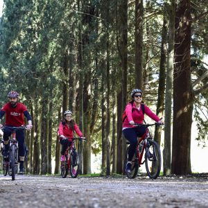 Biking tatoi royal estate 2