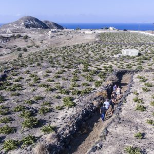 Greek Islands Multisport (Paros, Naxos, Santorini) 6