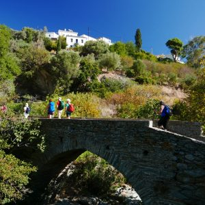Authentic Islands Hiking (Andros, Tinos) 16