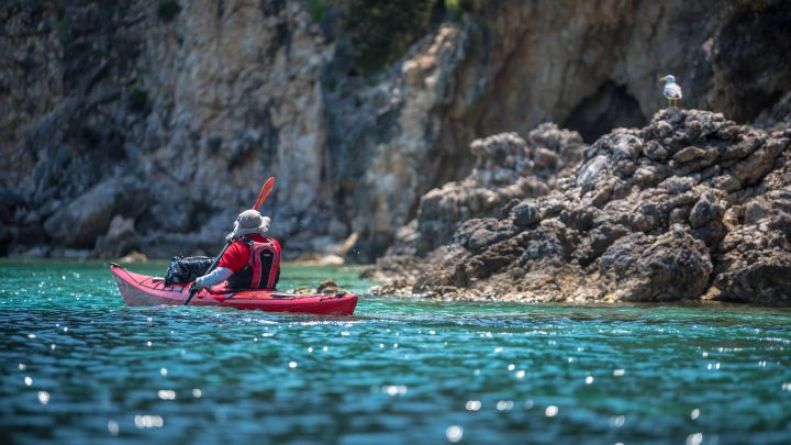 3 Day Sea Kayaking Tour 22